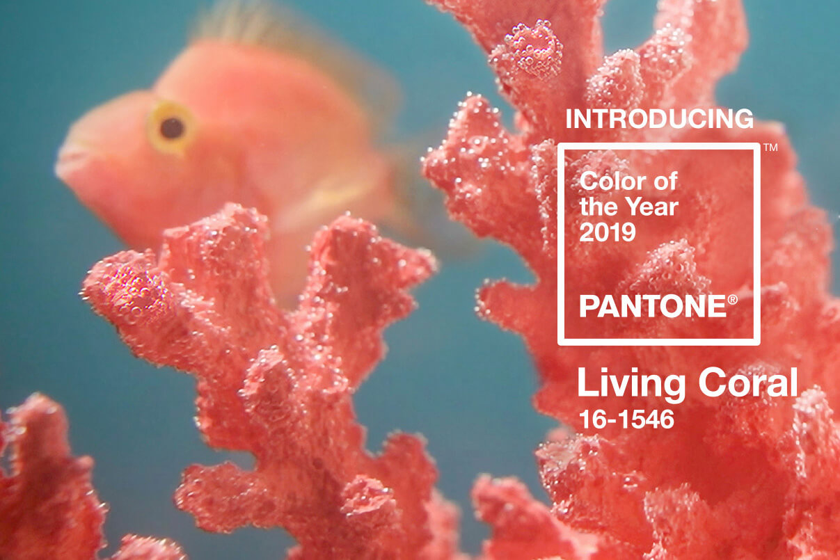 pantone color 2019 light coral runway-cover