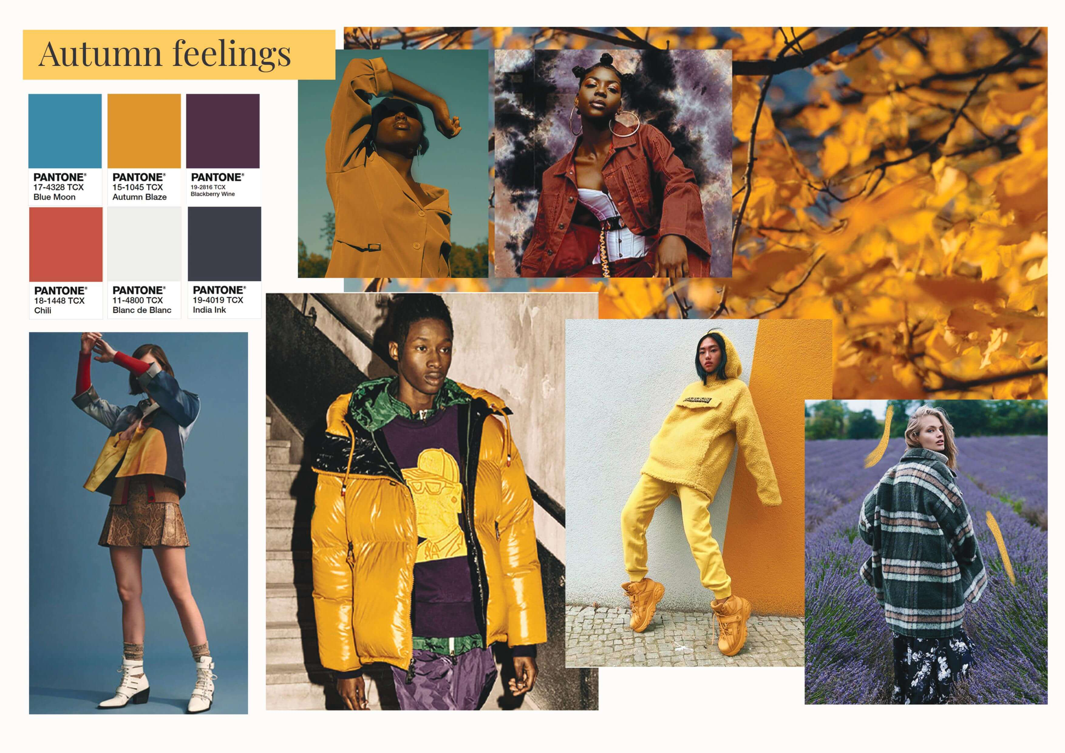 color trends for aw 2020-autumn feelings